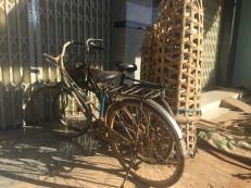bikes (3)